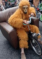 Ape-chair