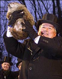 Groundhog_punxsutawney_phil