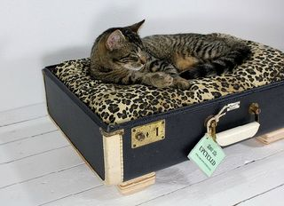 Modern-Vintage-Suitcases-Pet-Furniture-from-Atomic-Attic