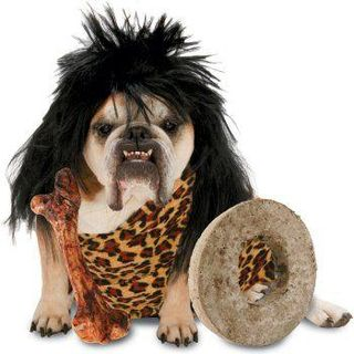 Halloween_costume_dog_cave_dog