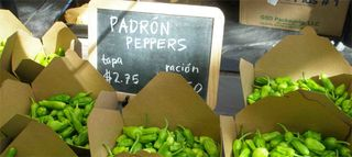 Blog_peppers