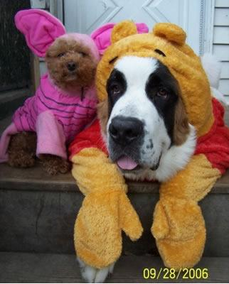 Pooh_bear_and_piglet_dogs_2